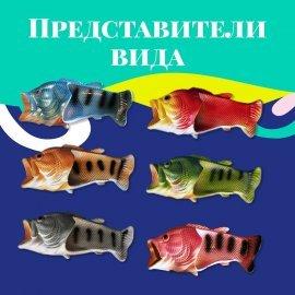 Рыбашаги